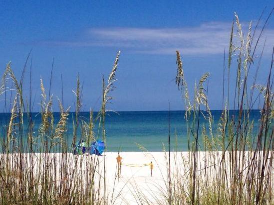 St Pete Beach Weddings Locations Clearwater